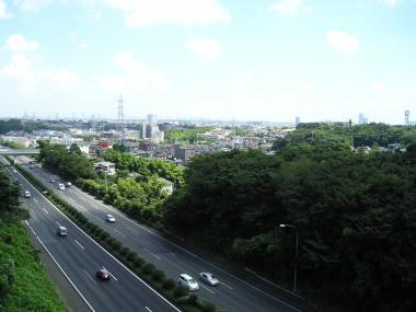 2006819_008